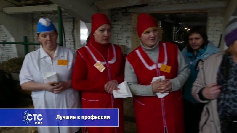 Конкурс мастеров машинного доения