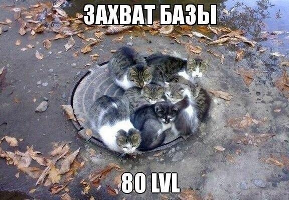 http://cs412820.vk.me/v412820838/7f70/HudzIbadkY8.jpg