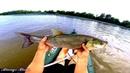 Рыбалка с ночевкой на крупного жереха Разведка новых мест для рыбалки Рыбалка на нижней Волге