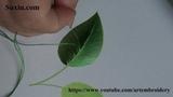 Leaf Embroidery for beginner(19)葉 初心者に刺繍ししゅう