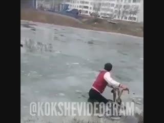 Көкшетауда бала суға батып кете жаздады