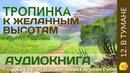 12 В тумане Тропинка к желанным высотам Галина Гура