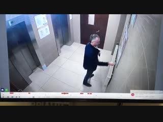 Вандализм жителя в парадной дома 24 по ул. Токарева (г. Сестрорецк)