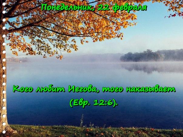 Исследуем Писания каждый день 2016 - Страница 2 VsAXT539CZA