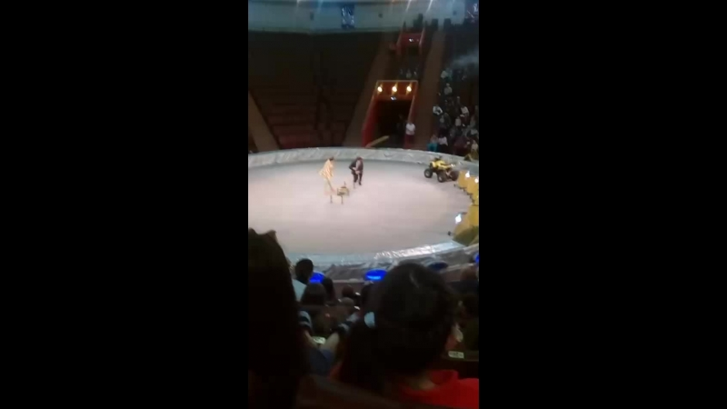 Виктория Веснина - Live