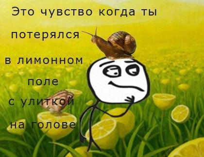 http://cs406626.userapi.com/v406626872/219f/3ES7F4X-37U.jpg