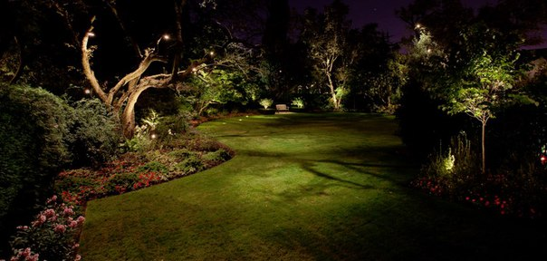 Аура ландшафтного освещения (1 фото) - картинка