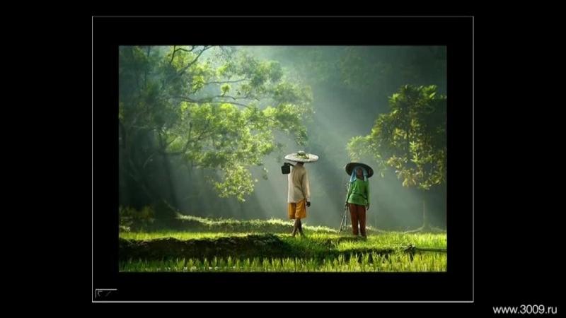 Рубрика «Вдохновение». Мастера современной фотографии - Rarindra Prakarsa