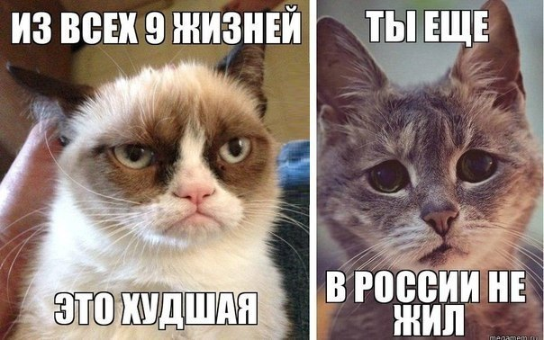 на аватарку картинки: