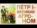 Амарант пища богов И что еще запретил Петр 1 на Руси