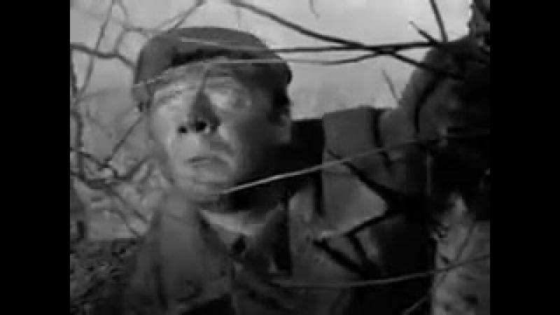 18 мая 1958, 60 лет назад, Золотую пальмовую ветвь Каннского кинофестиваля получил советский фильм Летят журавли