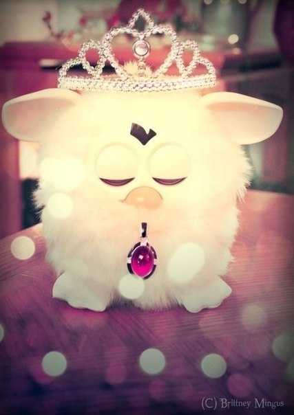 Как для ферби сделать характер принцессы