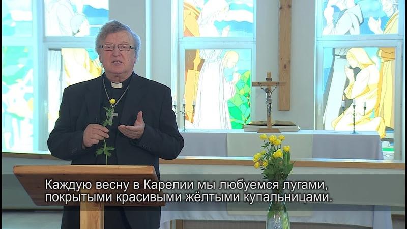 Kristinuskon ABC. Alkukesän ihme / Азбука христианства. Летнее чудо
