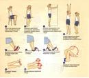 Упражнения для профилактики заболеваний вен ног