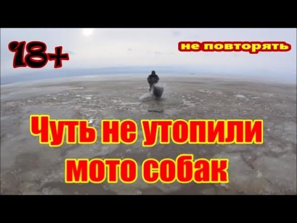 Чудское Peipsi Lake Оффроуд по воде на мото-собаках !не повторять Выезд с озера д.Спицино