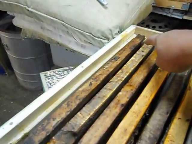 Ловушка для пчёл. Сборка и краткая инструкция.