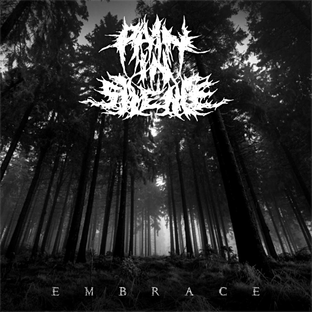 Pain In Silence - Embrace (2018)