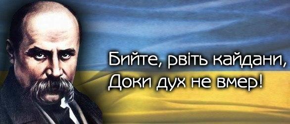 Колонна из 300 авто отправилась в аэропорты встречать Януковича - Цензор.НЕТ 425