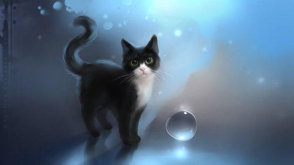 красивые картинки с котами