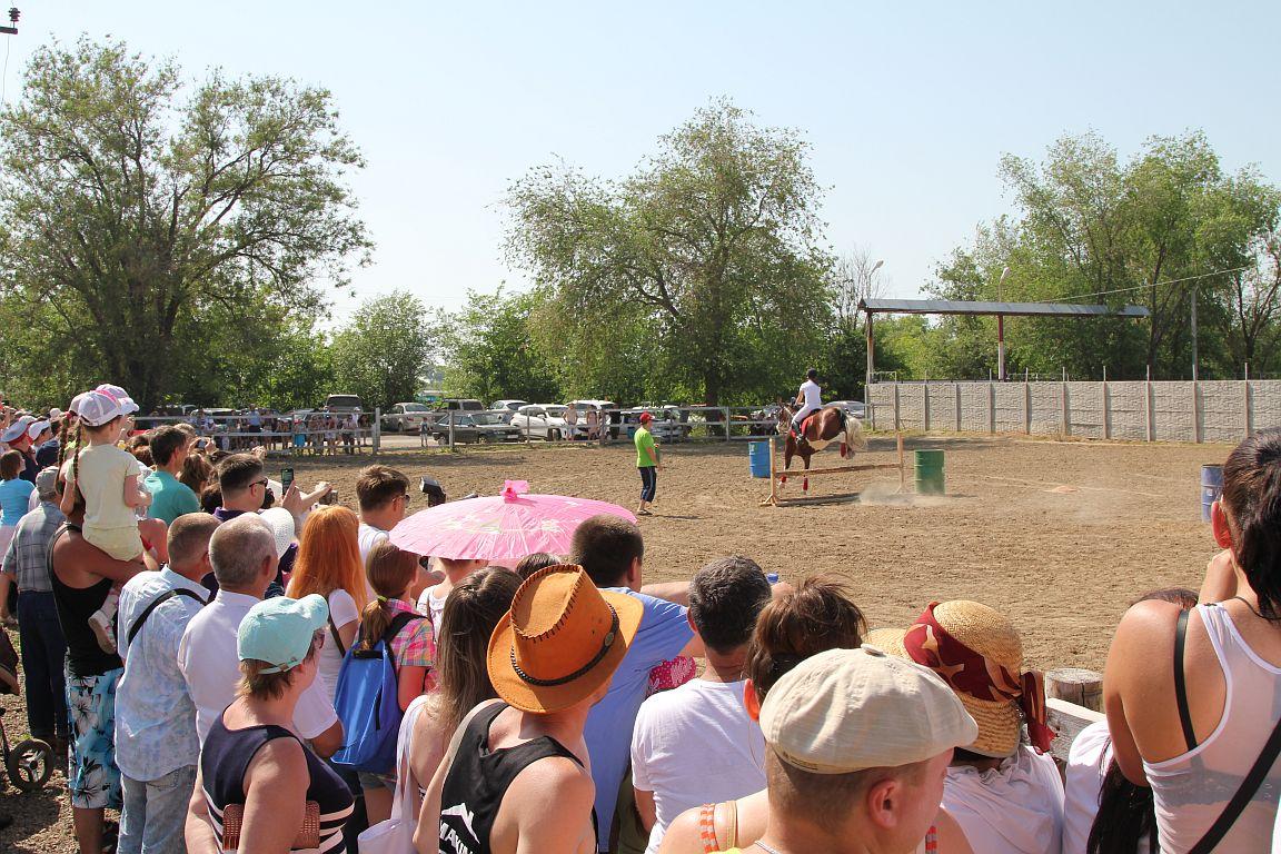 В городе Таганроге на Мариупольском шоссе открылась казачья конно-спортивная школа «Атаман»