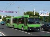 Поездка на автобусе МАЗ-105,гос.№ АВ 6379-7