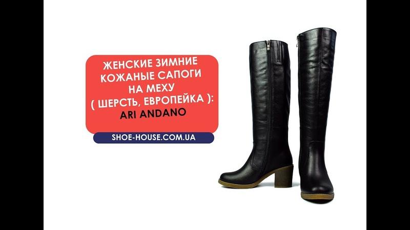 Черные зимние женские кожаные сапоги на каблуку ARI ANDANO на меху ( шерсть, европейка )