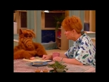 Alf Quote Season 1 Episode 21_Примерить