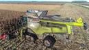 XXL MOISSON maïs 2017 in FRANCE Claas Lexion 780 TT Gros Matériel 4K