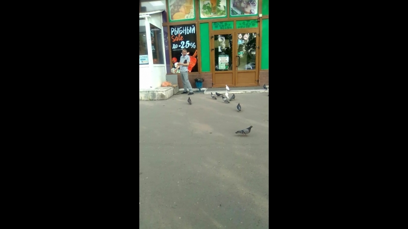 салевой парень кипишует с голубями