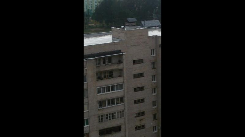 Смоляне замуровали козла-крикуна на балконе многоэтажки