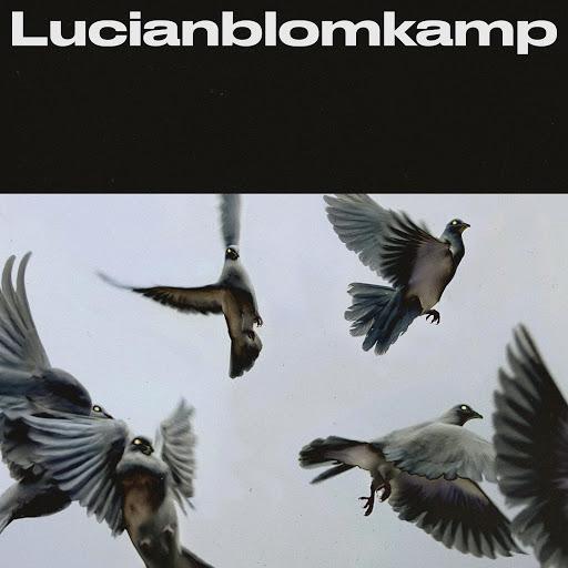 LucianBlomkamp альбом We.