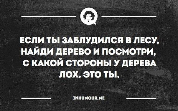 https://pp.vk.me/c543108/v543108554/151a7/6Je8hTvfJAk.jpg