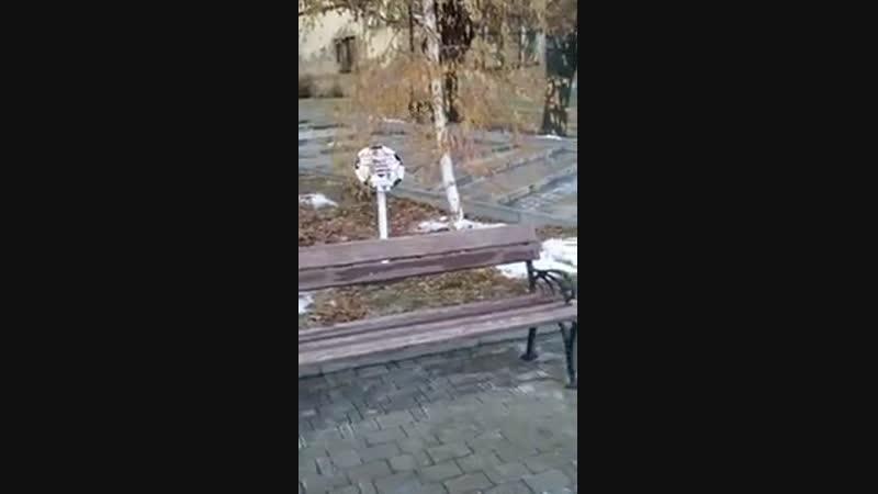 Лиса в Донецке. Парк Щербакова.