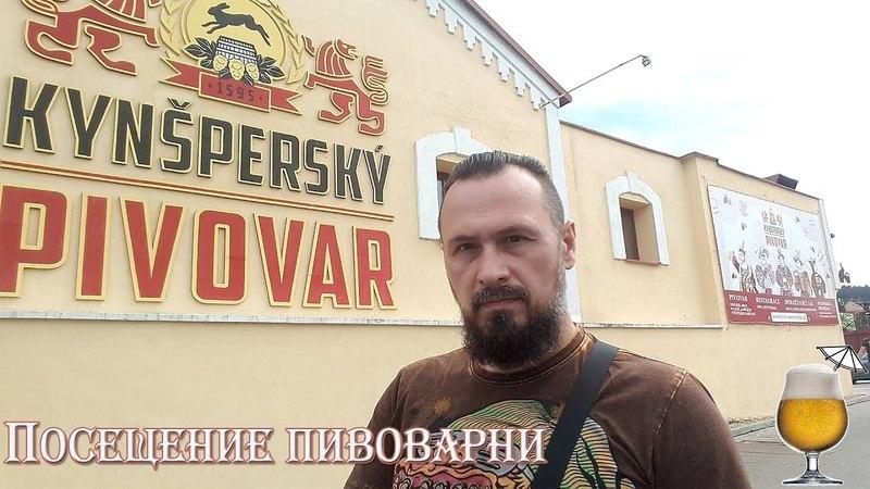 Чешская пивоварня Kynšperský pivovar. Интервью с пивоварами. Участие в варке. Пиво из мазака. 18