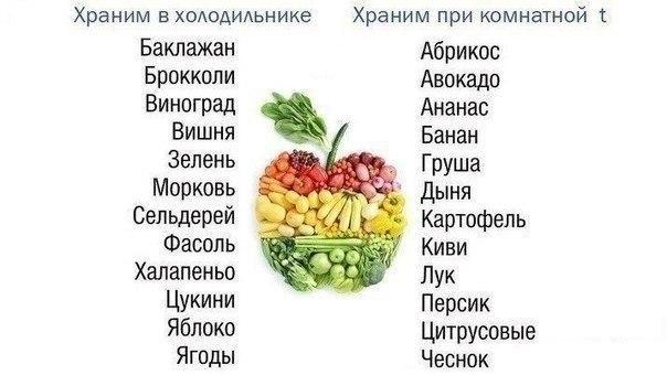 Где нужно хранить овощи и фрукты, чтобы они не потеряли свою свежесть и пользу?