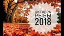 Рыбы Гороскоп на Октябрь 2018 Любовный гороскоп Финансовый гороскоп