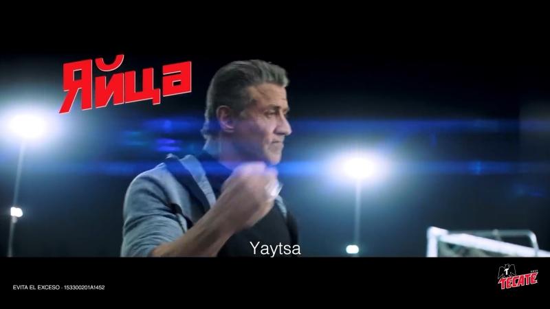 Яйца - Yaytsa - Sylvester Stallone Dolph Lundgren (Ivan Drago) entrena al Tecatito una forma muy peculiar Entrenamiento