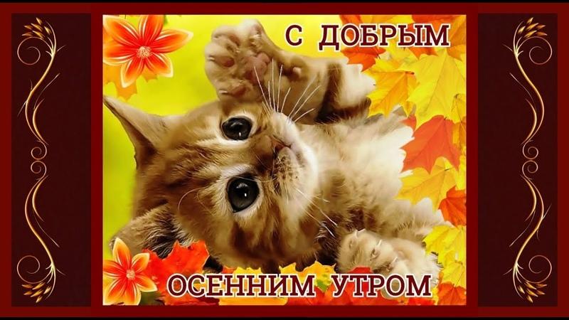 С ДОБРЫМ ОСЕННИМ УТРОМ(музыкальное видео с пожеланиями доброго утра)