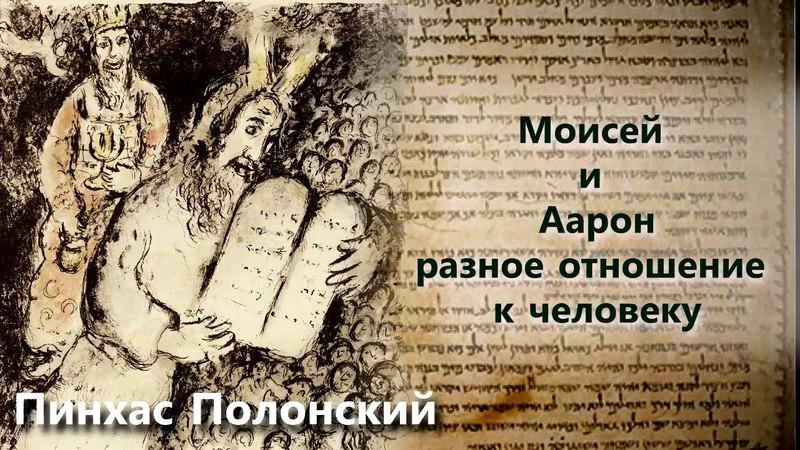 Пинхас Полонский. Моисей и Аарон. Разное отношение к человеку. Урок 5