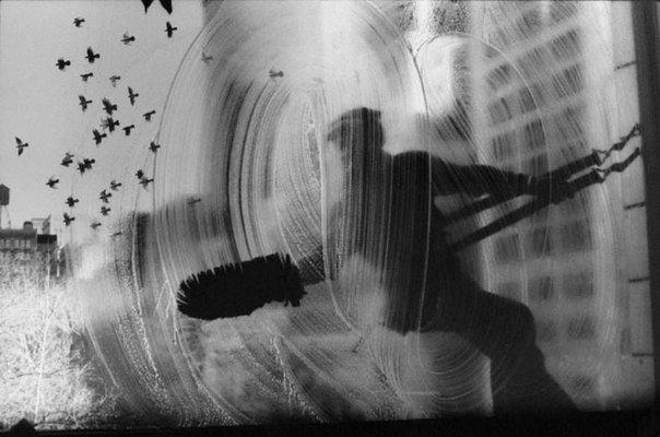 Мойщик окон и голуби, Нью-Йорк, 1972 год.