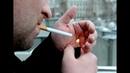 Табак или коррупция
