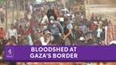 Bloodshed at Gaza's border - Israeli gunfire leads to dozens dead