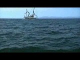 Акулосьминог (Sharktopus, Asylum-Syfy MONSTER MADNESS).flv