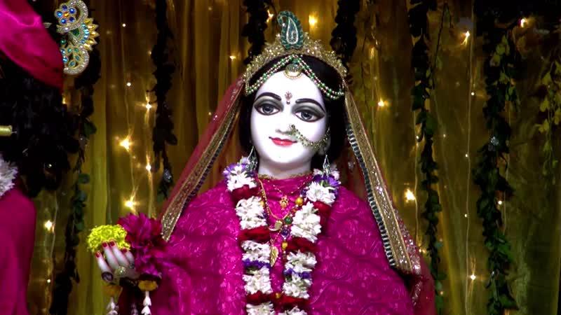 Mangal Aarti of Sri Nrisimhadev Sri Radha Madhava and Sri Panchatattva and Jagannath