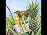 А что ты знаешь об ананасах!