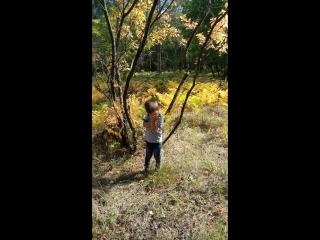2.09.2018 #Темушка #лес
