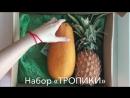 Фруктовая коробка Тропики