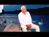 Zeljko Samardzic - Mesec u vodi - (Official Video)