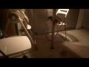 3800). 03.11.2018 - Кошка Мариша уехала домой (видео из дома)