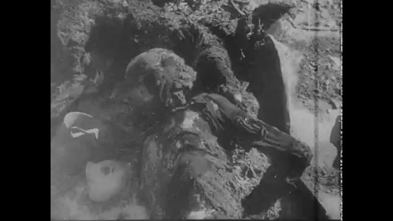 (18)Кинодок-ты о зверствах немецко-фашистских захватчиков (1945)...